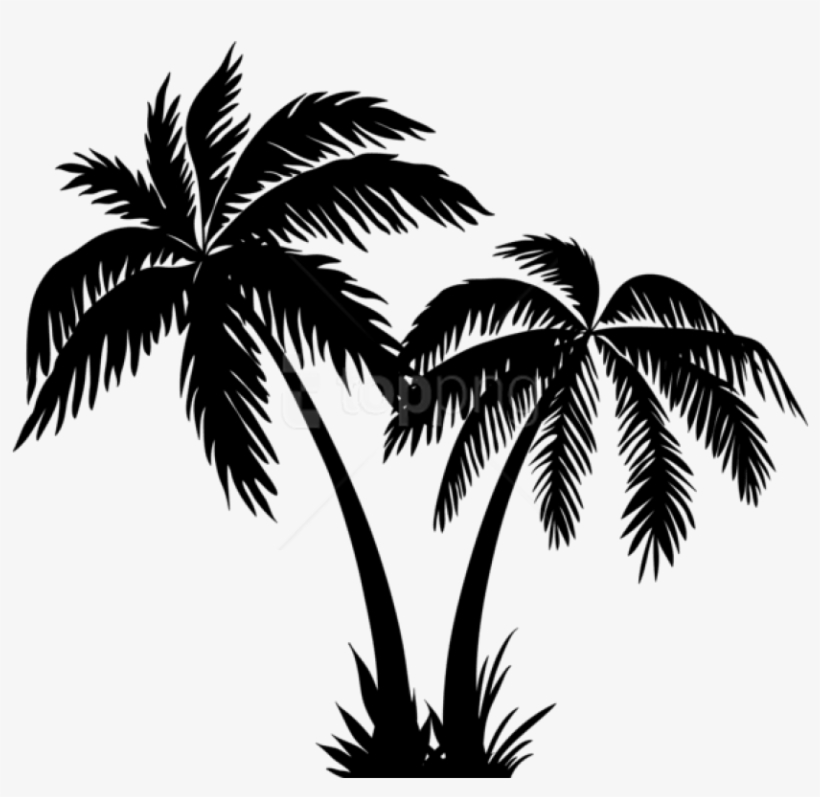 Free Png Palms Silhouette Png Coconut Tree Clipart Black And White