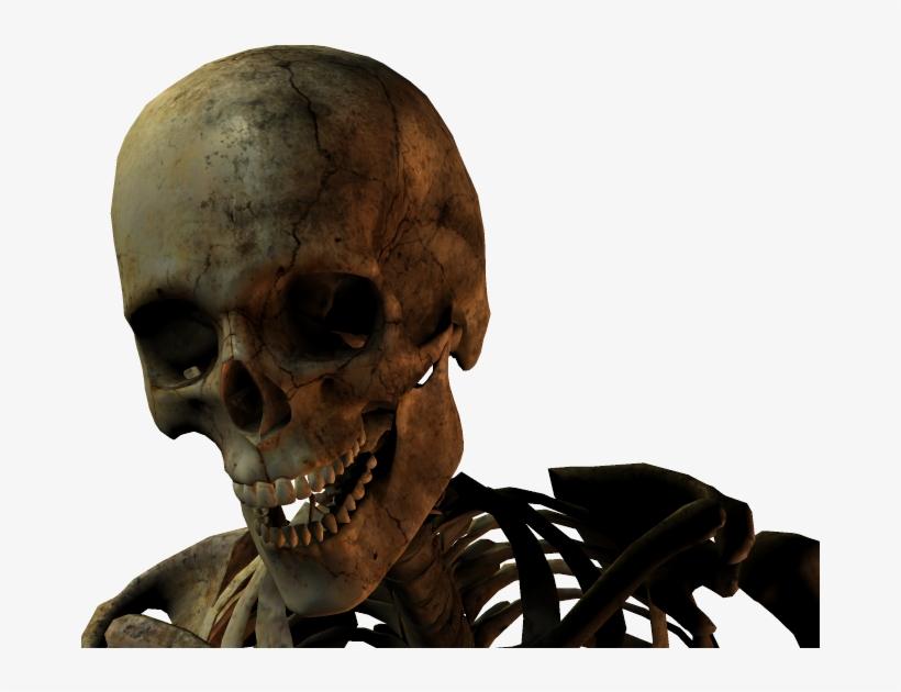 3d Skull Photo - Skull - 831x550 PNG Download - PNGkit