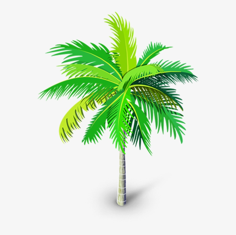 Palm Tree Png, Palm Trees, Youtube Thumbnail, Tree - Roystonea