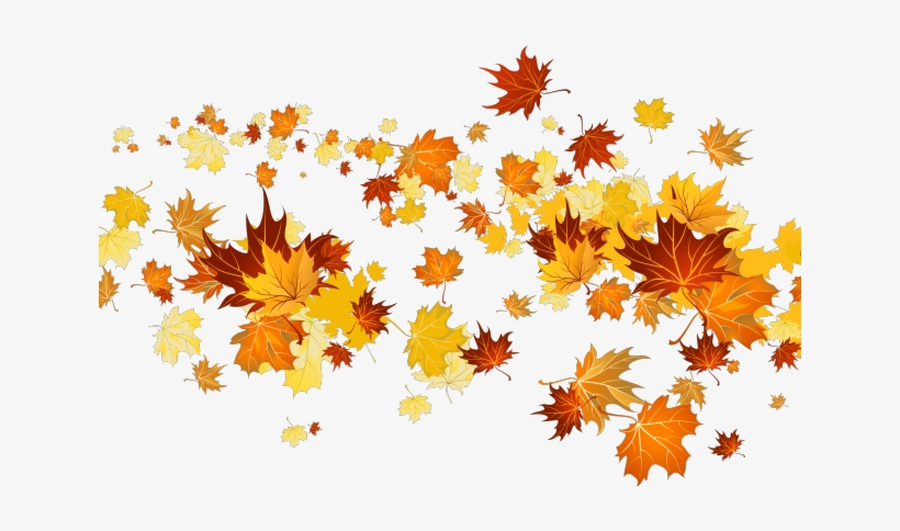 Leaf free leaves clipart free clipart graphics images and photos 5 3 -  Clipartix