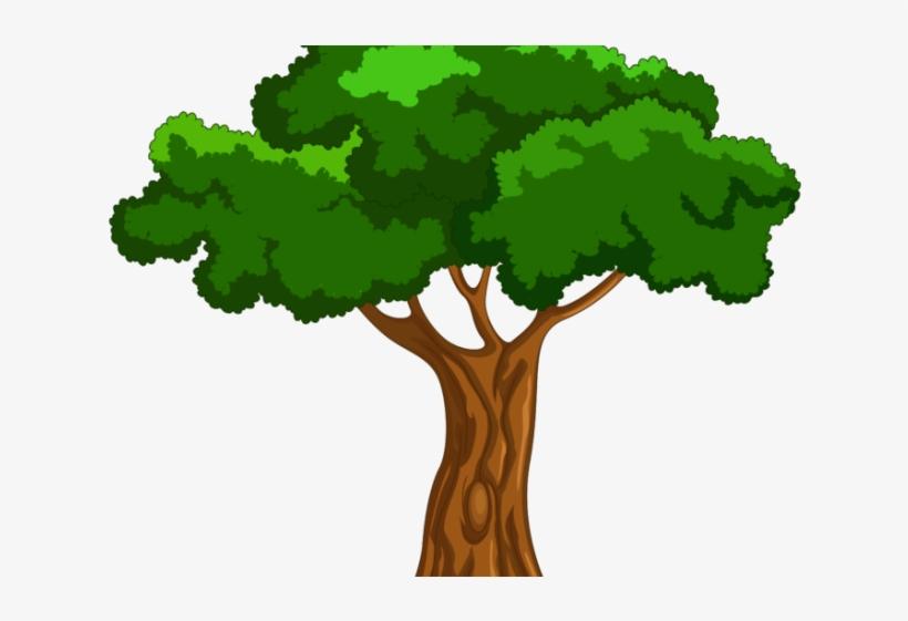 Tree Clipart Clipart Mango Tree Cartoon Big Tree Png 640x480 Png Download Pngkit