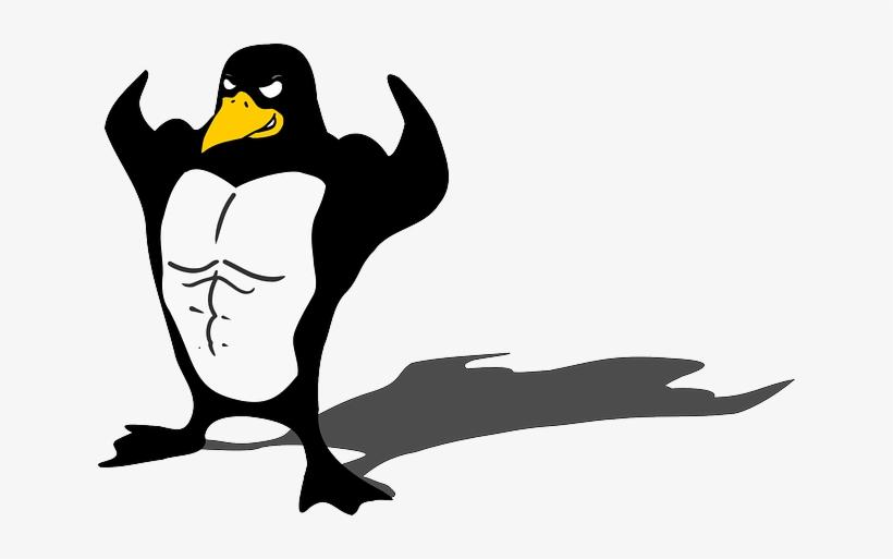 Penguin, Bodybuilder, Linux, Muscle, Tux, Animal, Funny