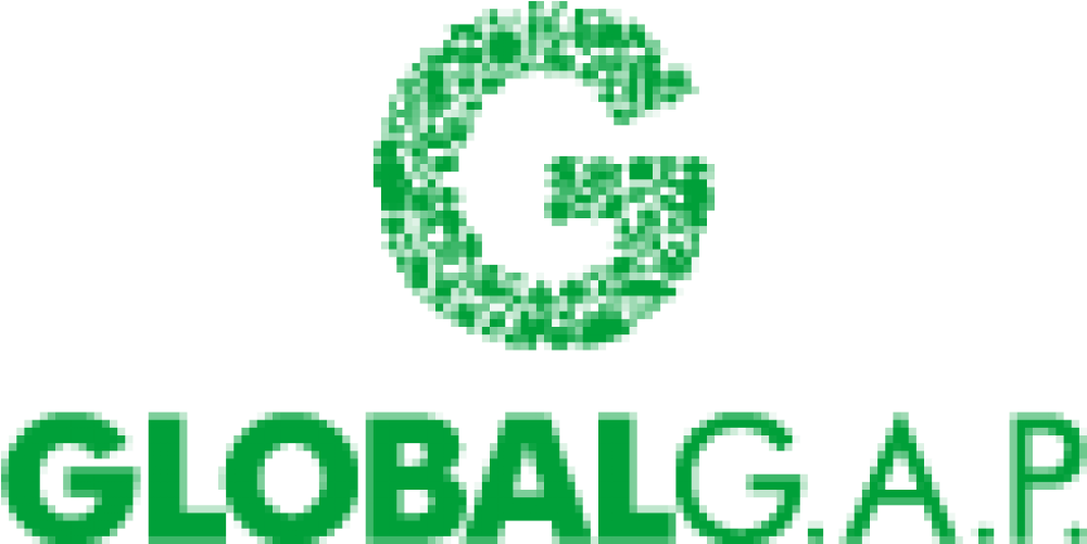 Download Global G A P Consulting And Certification Services Global Gap Logo Png Full Size Png Image Pngkit