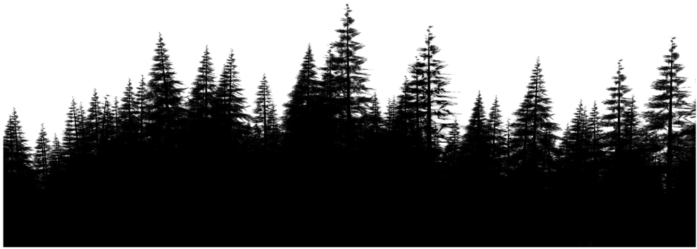 Download Forest Png File Download Free Forest Outline Full Size Png Image Pngkit Choose from hundreds of free forest backgrounds. download forest png file download free