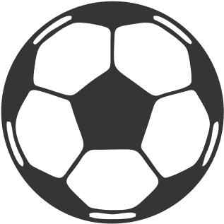 Download Sports Balls Soccer Ball Vector Free Full Size Png Image Pngkit