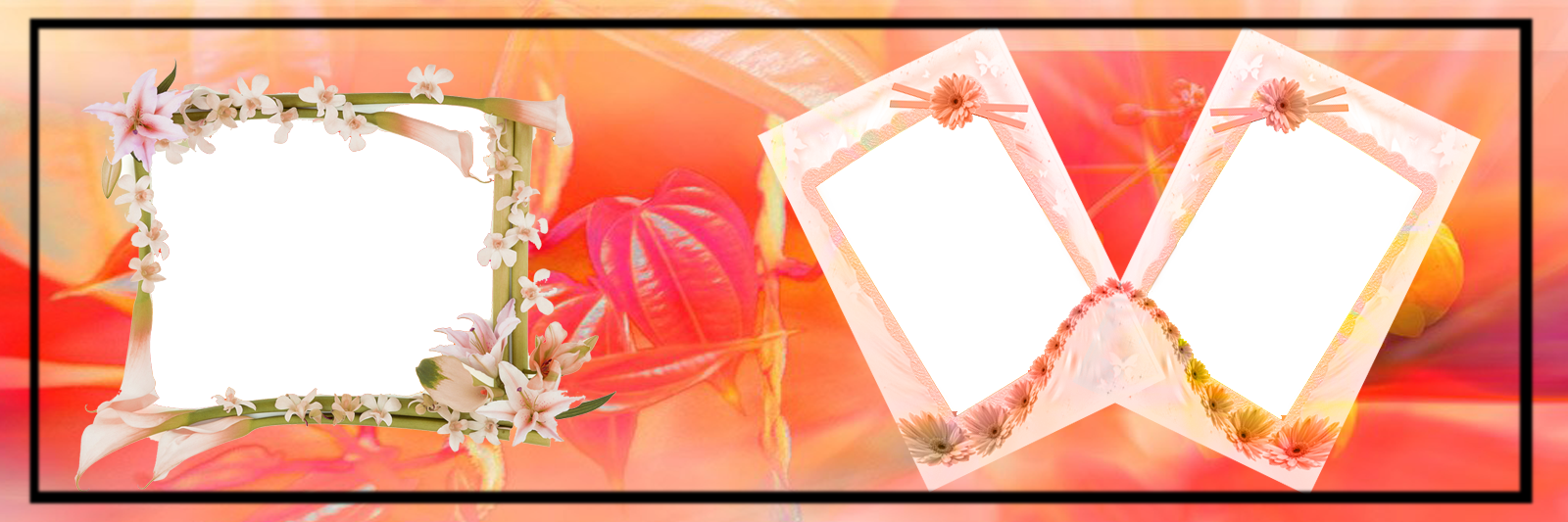 Download Wedding Album Frames Png Aspen For Women By Coty 0 75 Oz Cologne Spray Full Size Png Image Pngkit