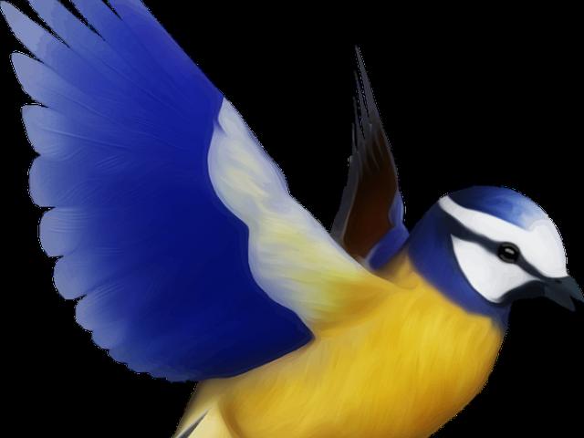 Download Flying Bird Clipart Bird Png Desenho De Passaro