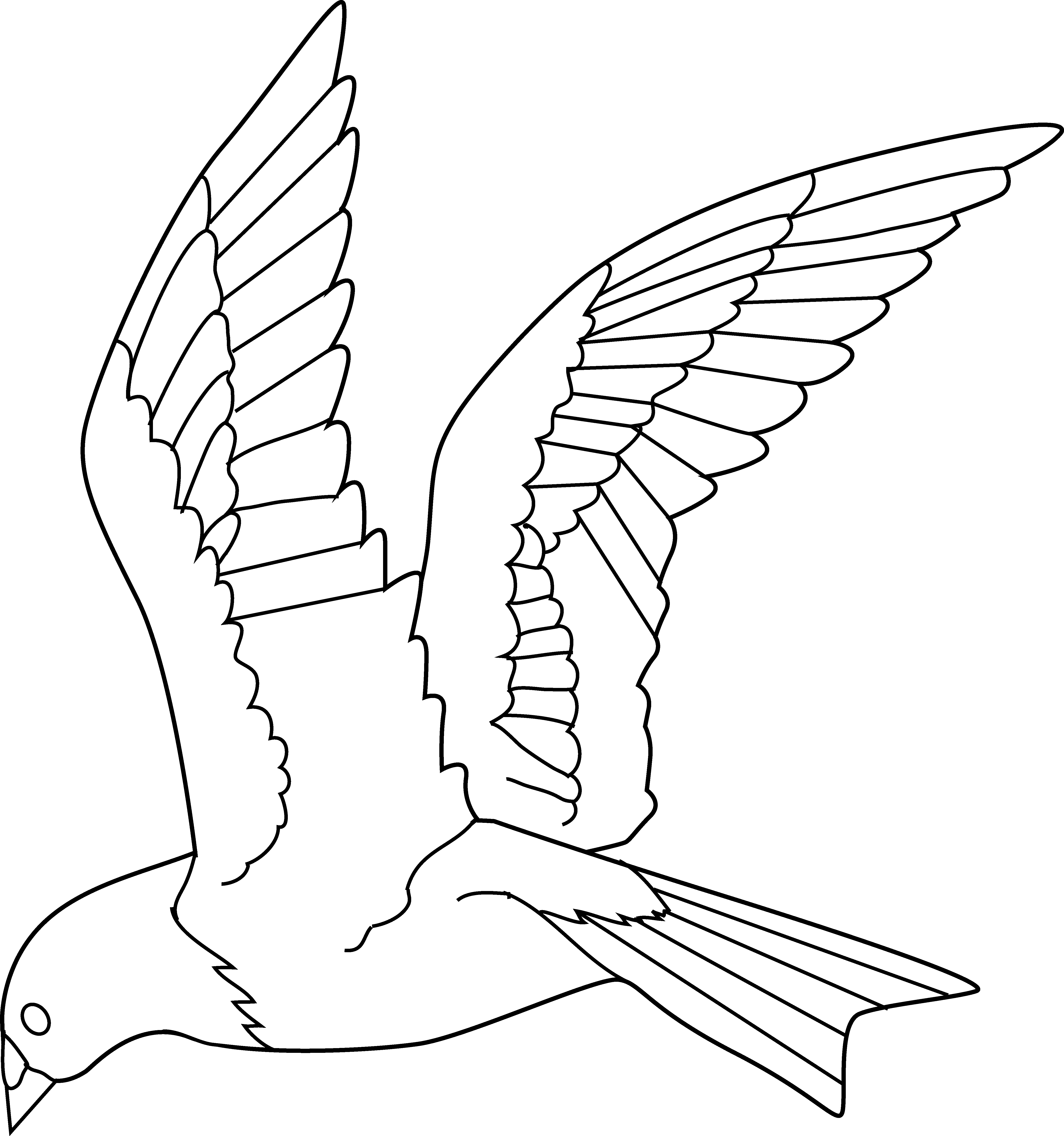 Download Flying Birds Clipart Gallery Bird Black And White Flying Parrot Line Drawing Full Size Png Image Pngkit