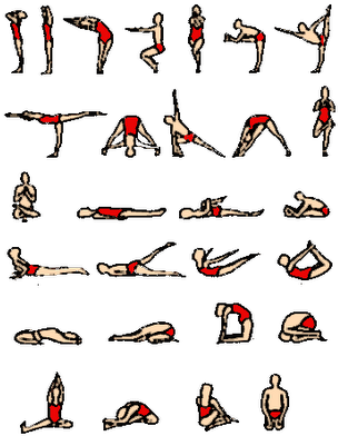 Download All Type Of Yoga Asanas Full Size Png Image Pngkit