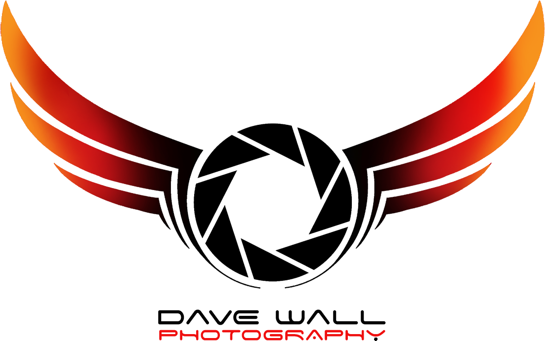 Download New Series Dslr Photography Logo Png Full Size Png Image Pngkit