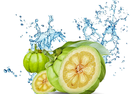 Download An Extract From The Fruit Rind Hydroxycitric Acid