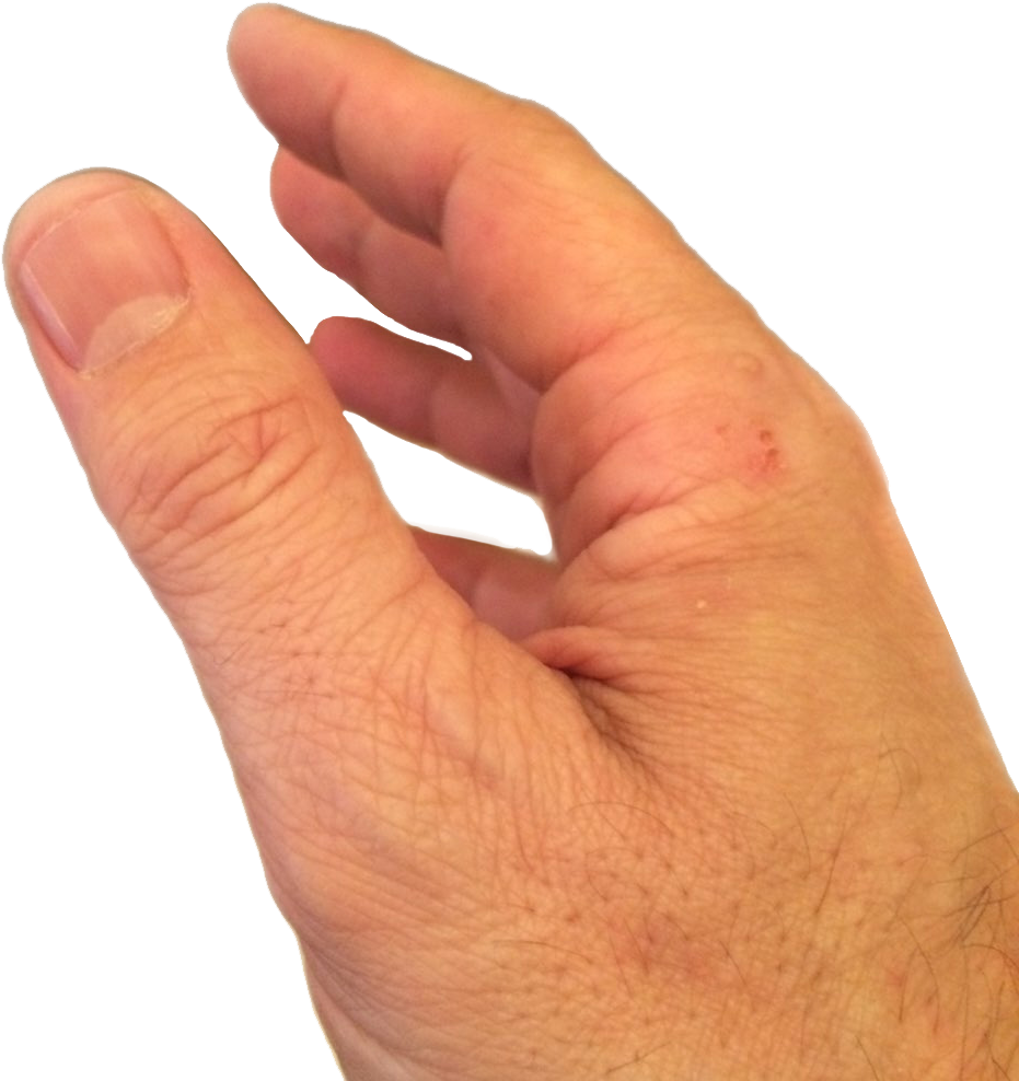 Download Hey, Followers, Here's A Png Of Scott Walker's Hand