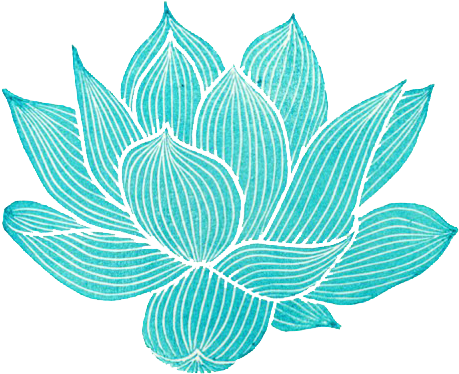 Download Tumblr Mn4seosjby1qmeo0do1 500 Lotus Flower Graphic