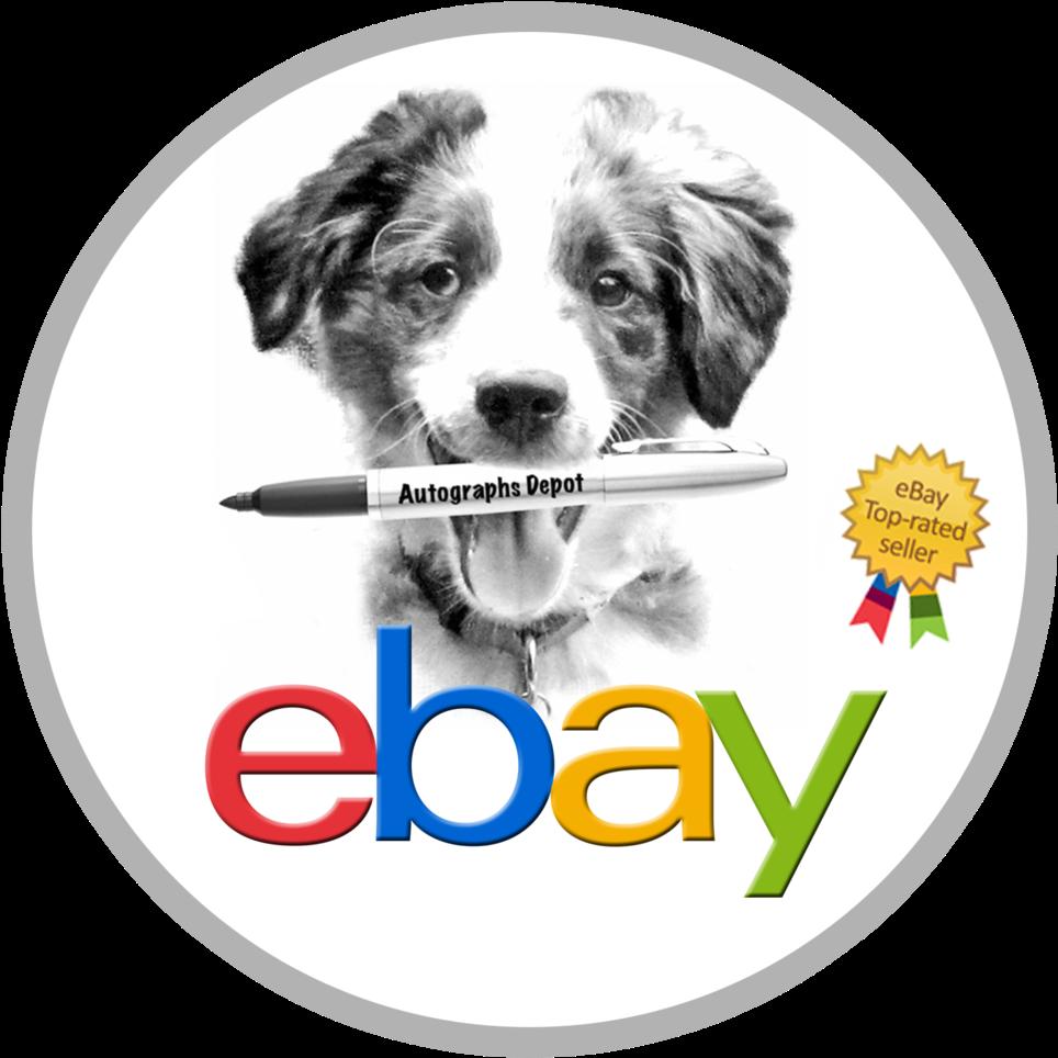 Download Ebay Logo Ebay Top Rated Seller Full Size Png Image Pngkit