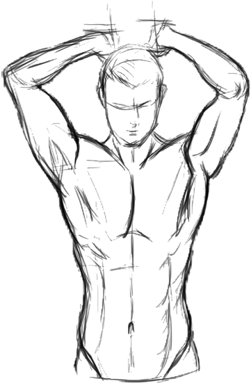 Download 298 Kj 71 Calories Body Sketch Drawing Male Full Size Png Image Pngkit