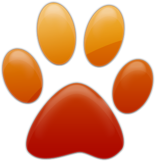 Download Cat Paw Png Download Red Orange Paw Print Full Size Png Image Pngkit 600 x 583 png 19 кб. download cat paw png download red