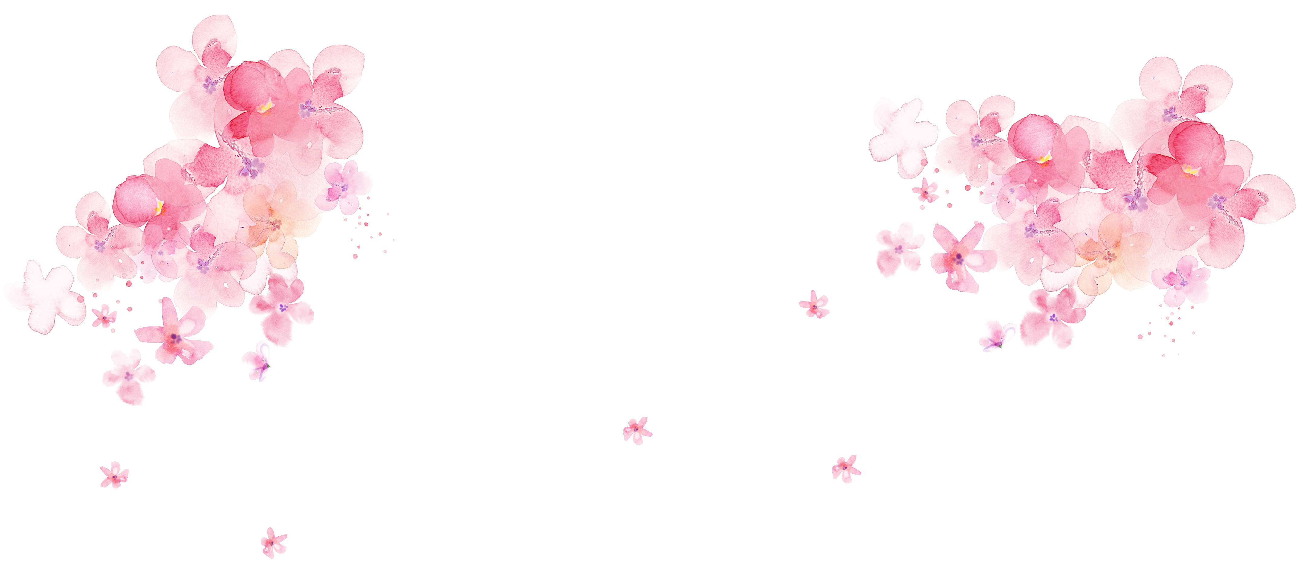 Download Pink Painting Flower Desktop Wallpaper Flowers Transprent