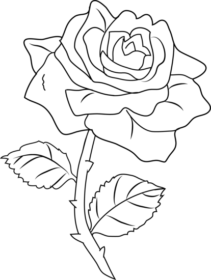 Download Pretty Rose Coloring Page Roses Outlines Full Size