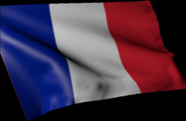 Download France Flag Png Transparent Images Flag Full Size Png Image Pngkit