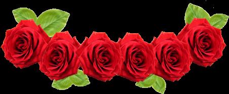 Download Red Rose Flower Red Flower Crown Transparent Full