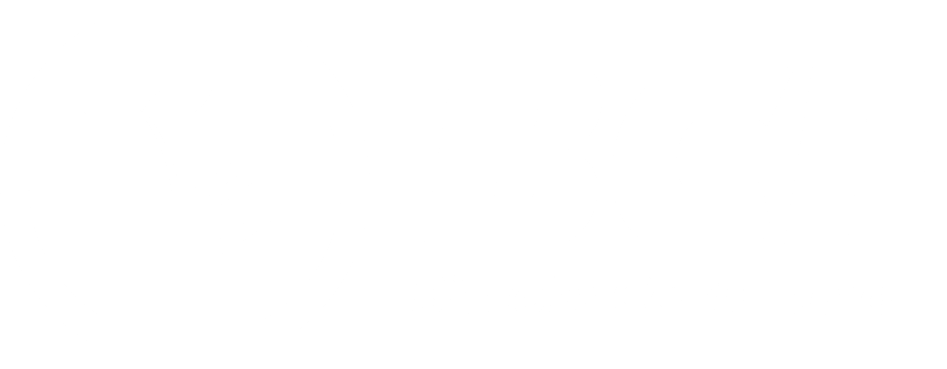 Download Bitcoin Cash Logo Png Full Size Png Image Pngkit