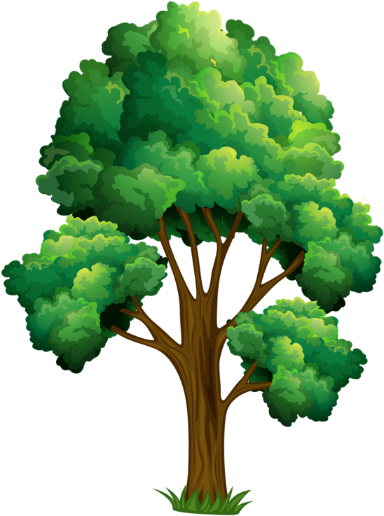 Download Elm Tree Clipart Realistic Tree Clip Art Full Size Png